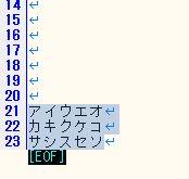 ひらがな→カタカナ変換_変換後